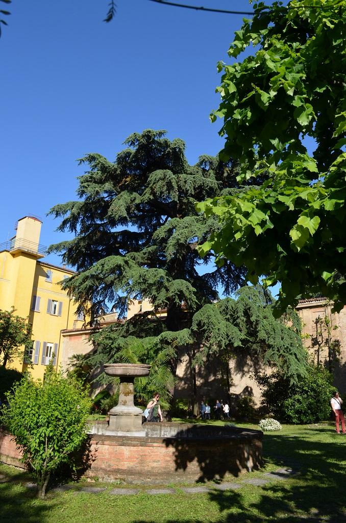 Palazzo Rosselli del Turco