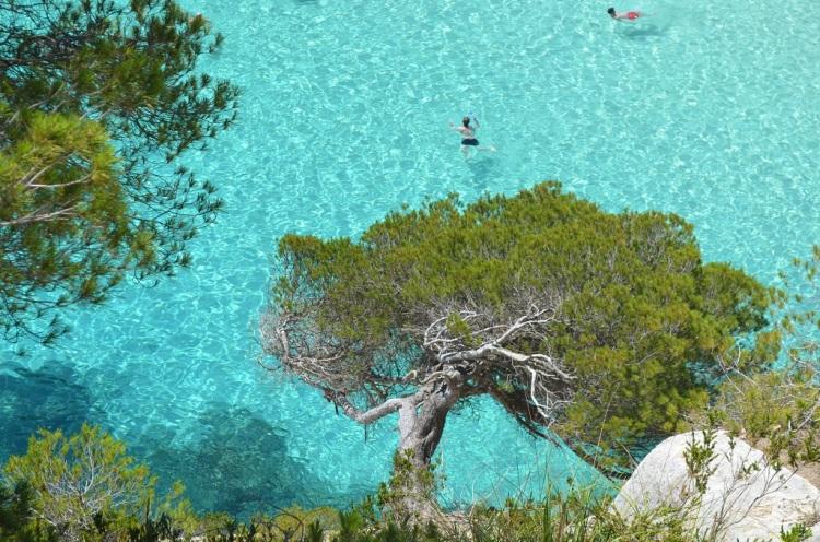 acque cristalline Cala Macarelleta Minorca