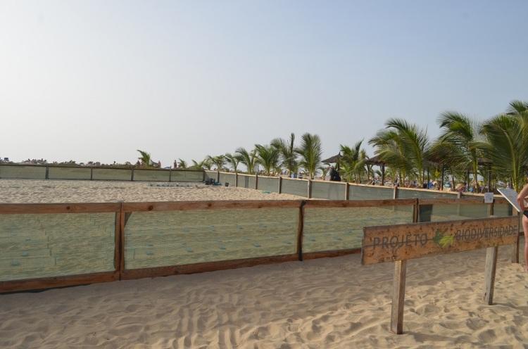 Projeto Biodiversidad Capo Verde