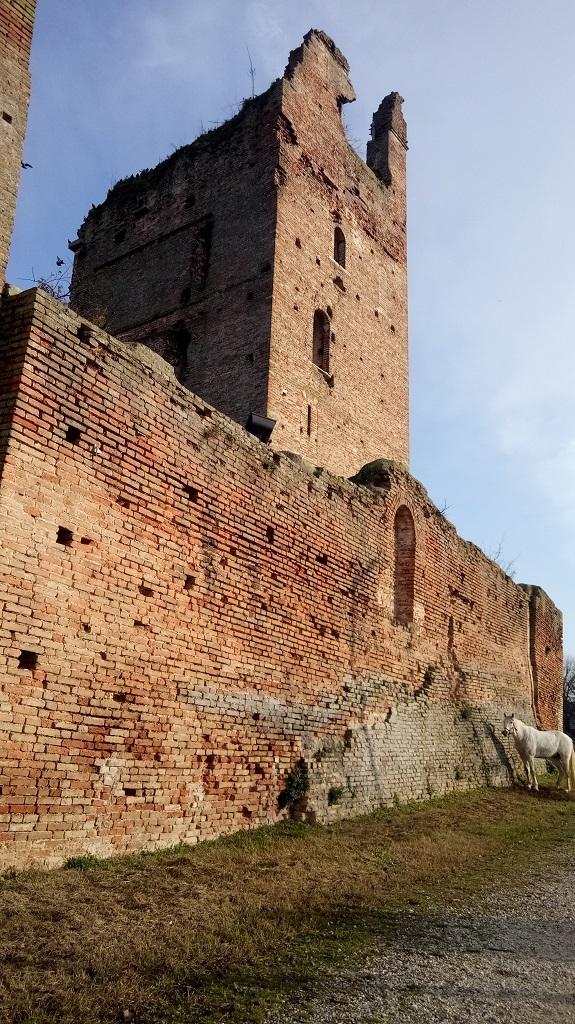 Mura del Castello - Castel d'Ario