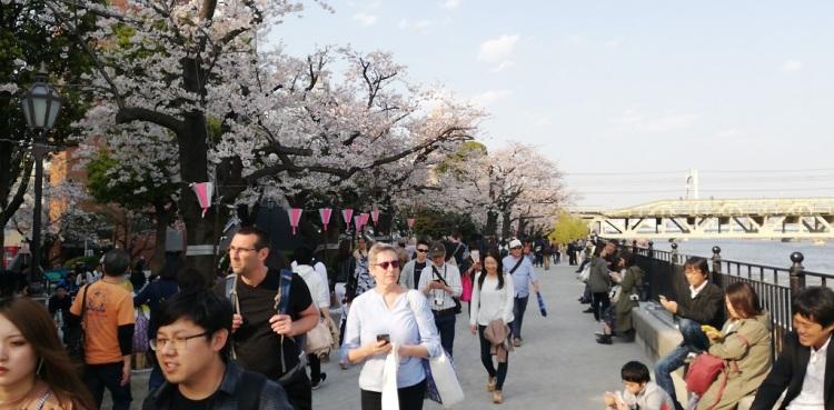 lungo il fiume Sumida - Tokyo