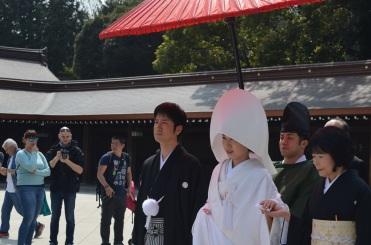 Matrimonio giapponese 2