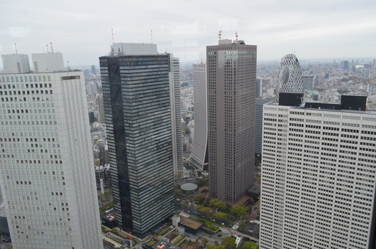 Panorama dal Tokyo Metropolitan Government Building