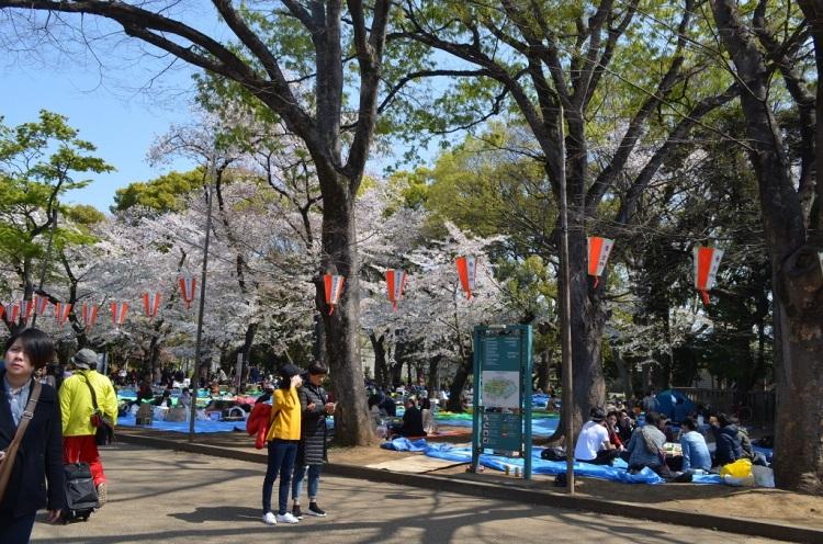 Ueno Park- Tokyo