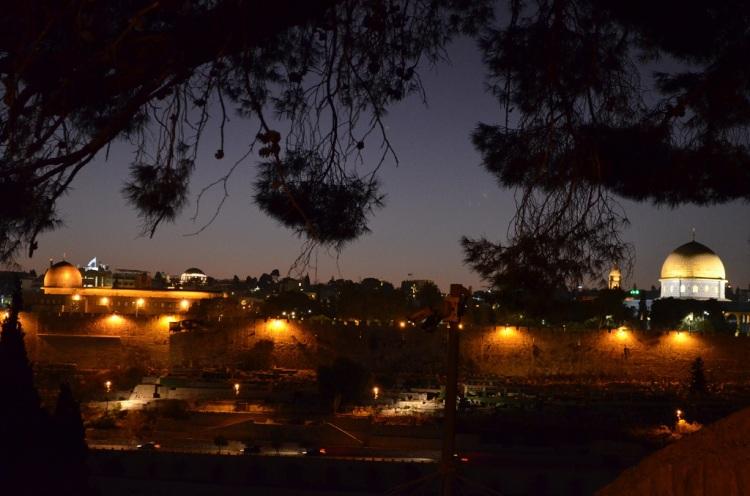 La Old city vista dal Monte degli Ulivi - Gerusalemme