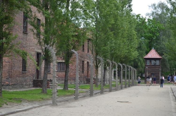 Il filo spinato di Auschwitz