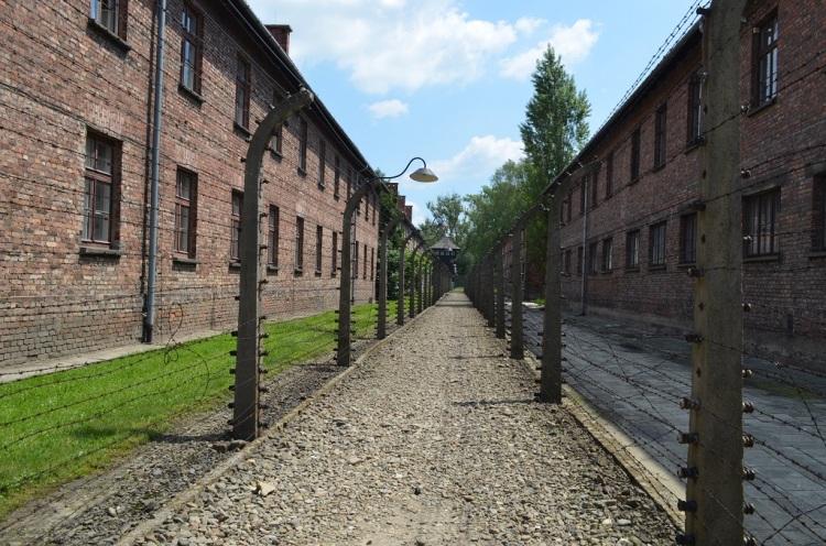 il filo spinato - Auschwitz