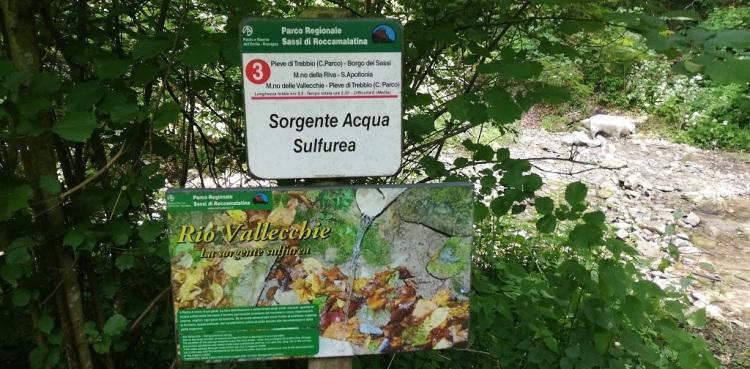 Sorgente acqua sulfurea Rio Vallecchie